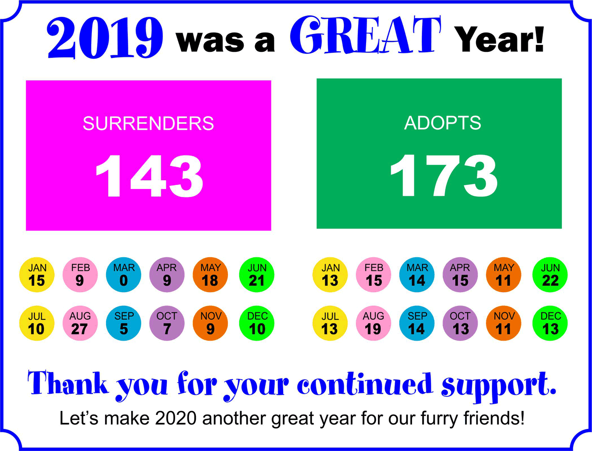 2019 was a great year!